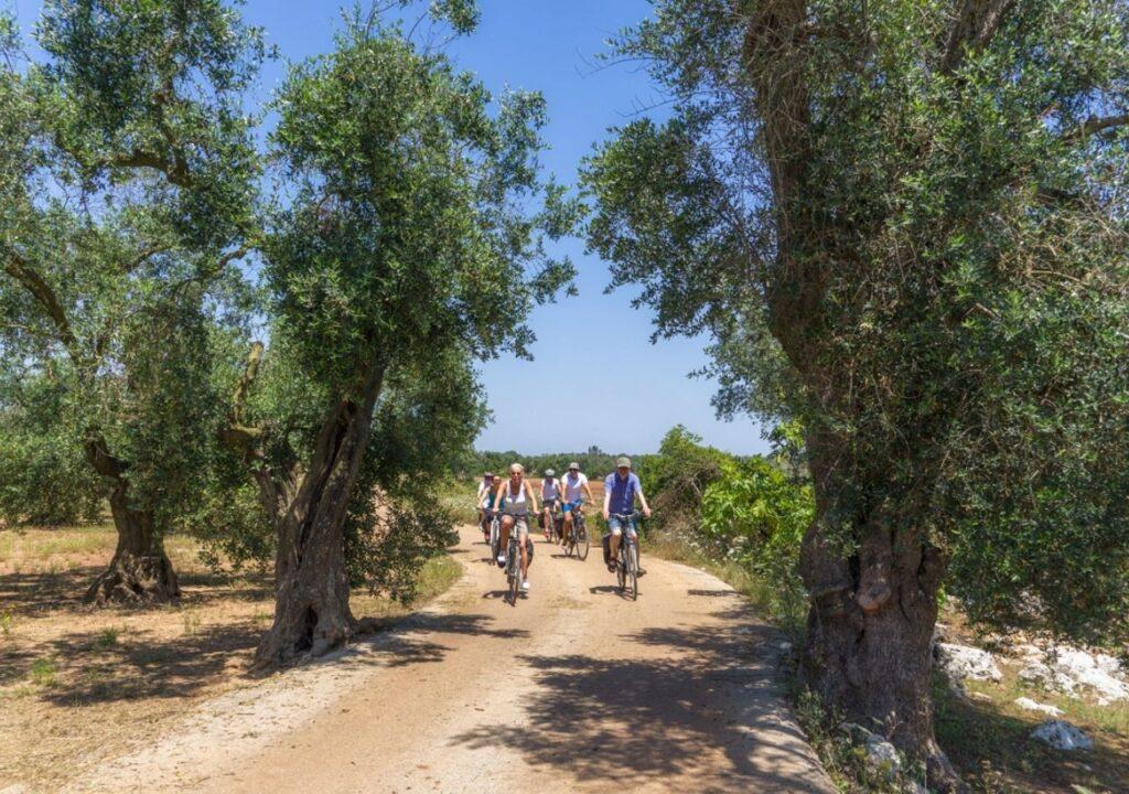 Okolice Gallipoli - Rowerowa Apulia z BezGranic Travel